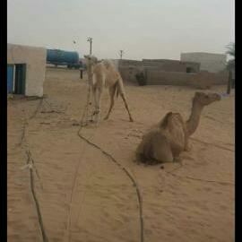 منظر من قرية أميميشات